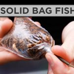 A Simple Guide To Carp Fishing With Solid Bags – Solid Bag Fishing