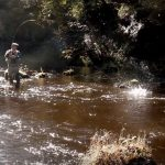 Fishing North Country Spiders, with Robert L Smith