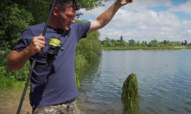Fishing for carp in the weed
