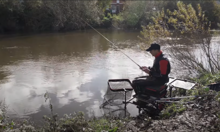 Record Breaking Tactics Revealed | Bleak Fishing on the River Wye