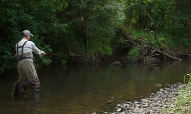 FLY FISHING TIPS FOR LOW, CLEAR WATER