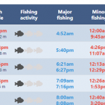 Tide Times & Fishing Forecasts