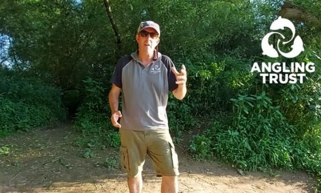 Three bits of kit you NEED for hot weather river fishing