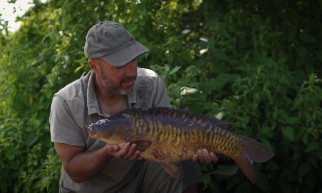 Back to Basics with Adam Penning