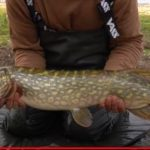 A Pike fishing special: Knowledge, tackle and safety!