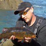 Catch wrasse on lures!