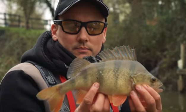 Light Lure Fishing On Canals